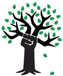 Resultado de imagen para ecosocialismo